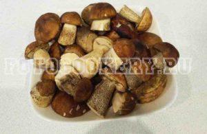 лесные грибы поберезовики